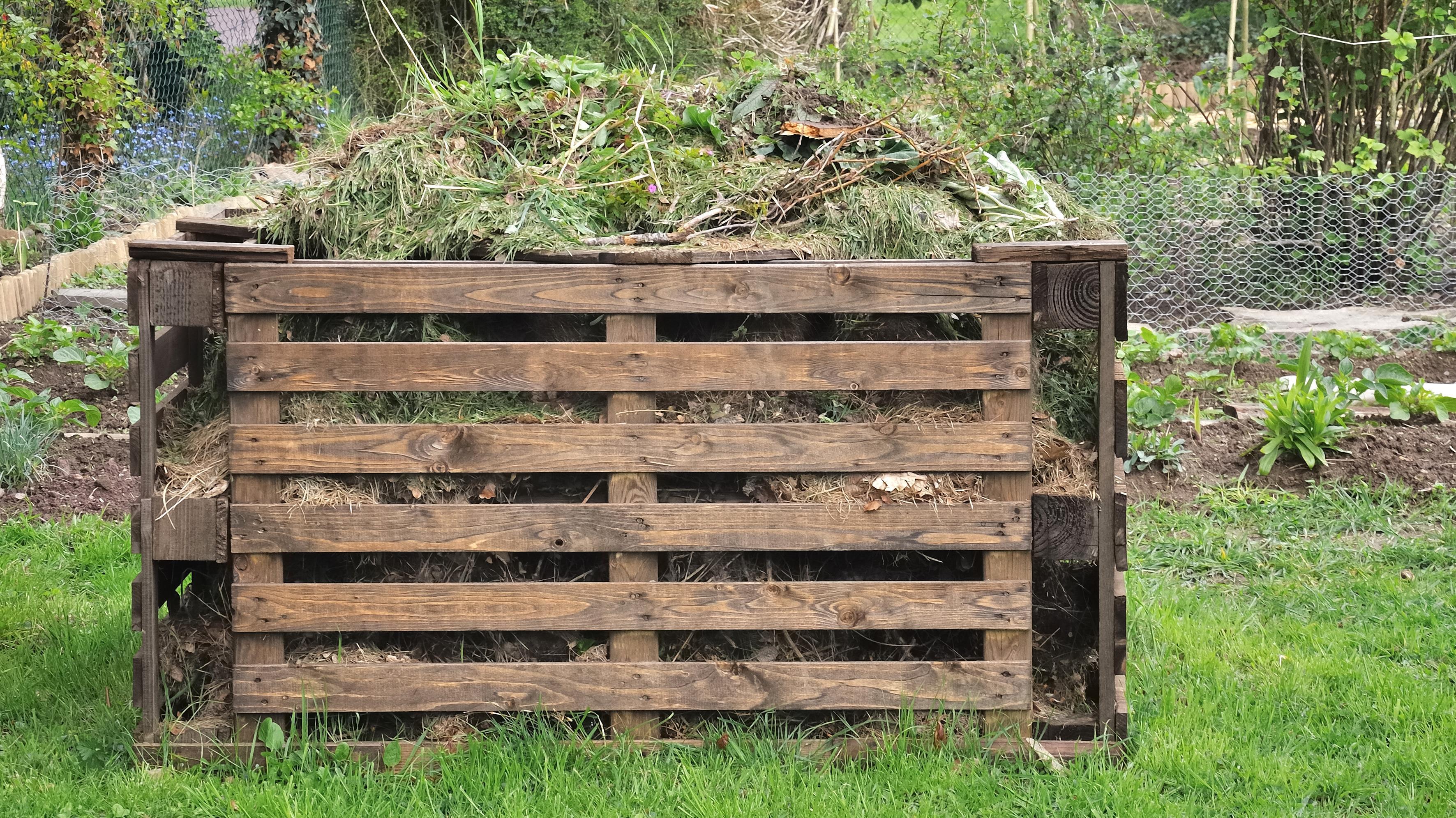 Byg din egen kompost | Lev nu | DR