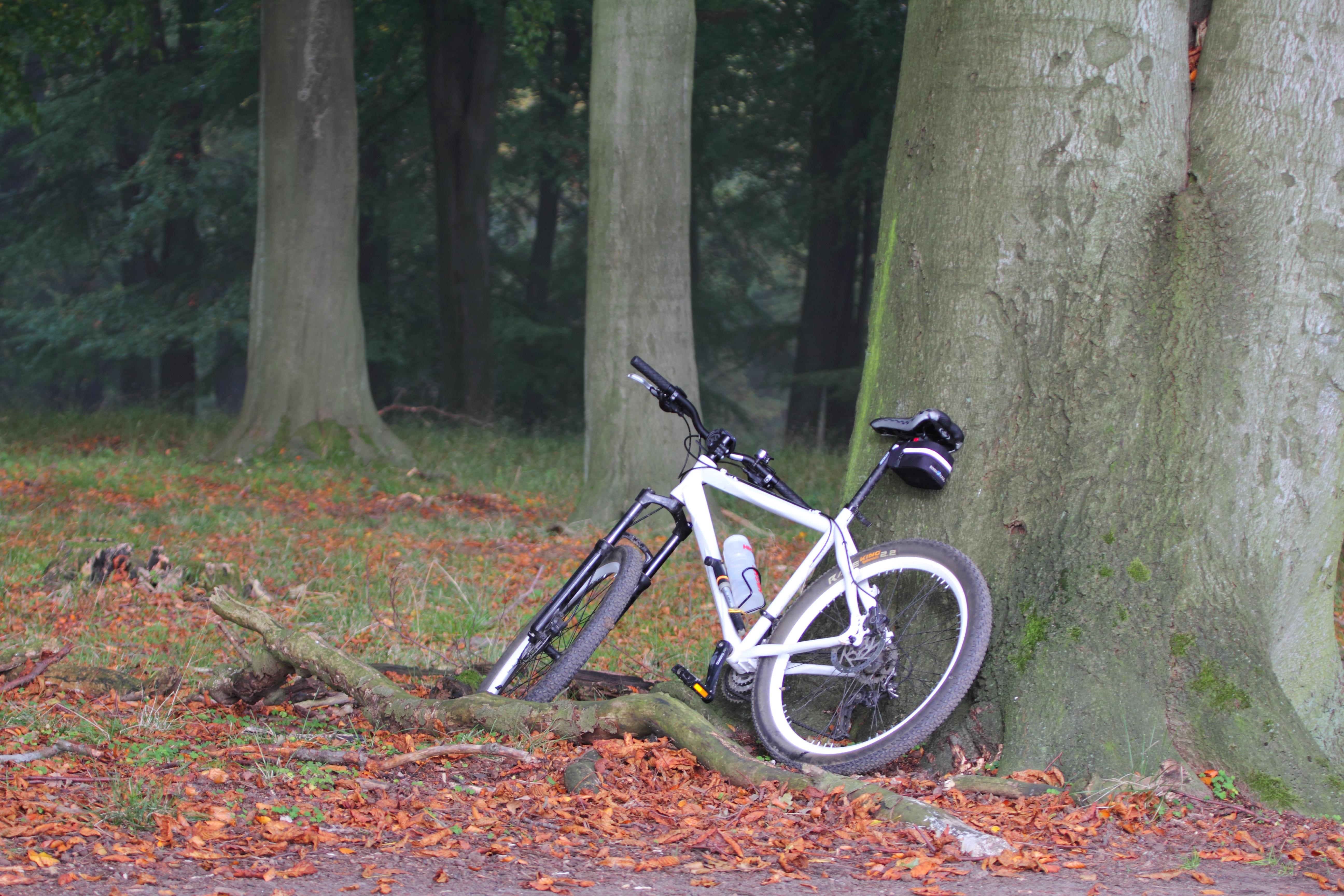 #944F37 Mest effektive Brevkasse: Hvilken Forskel Gør 100 Gram På En Cykel? Lev Nu DR Gør Det Selv El Cykel 5135 518434565135