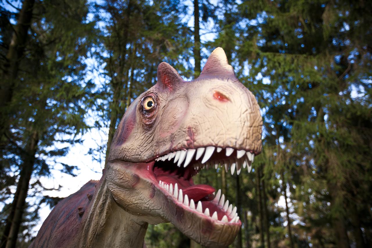 ceratosaurus.jpg
