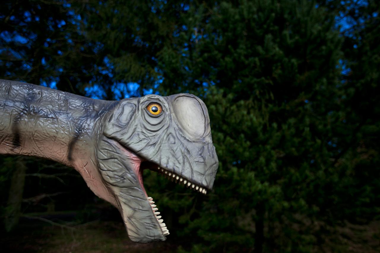 europasaurus.jpg
