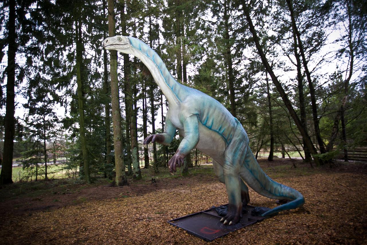 plateosaurus.jpg