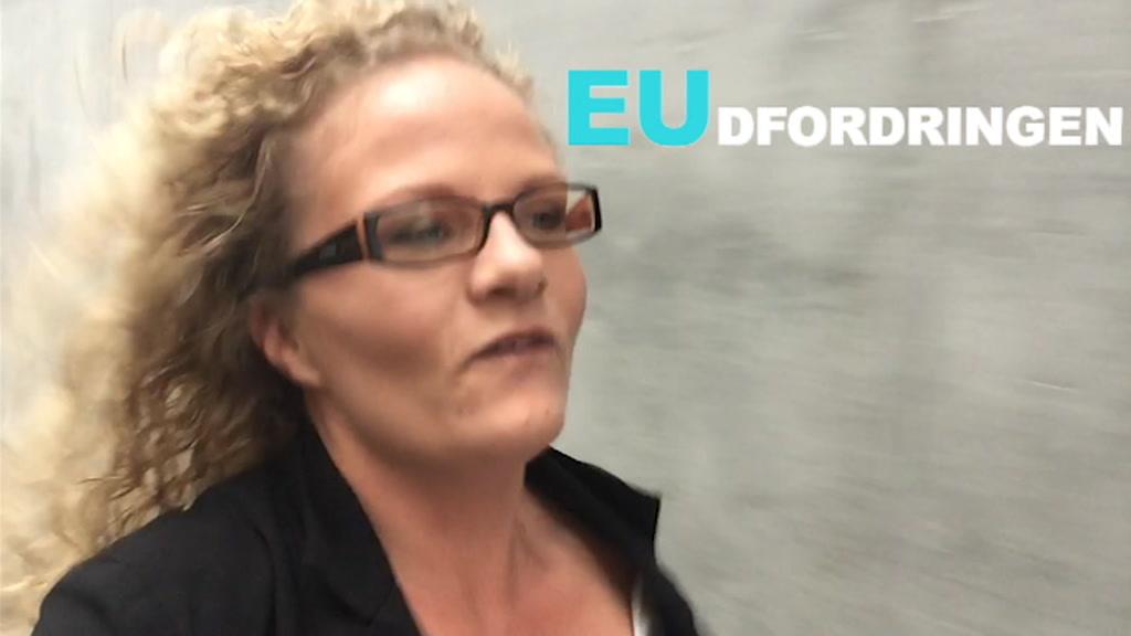 EUdfordringen