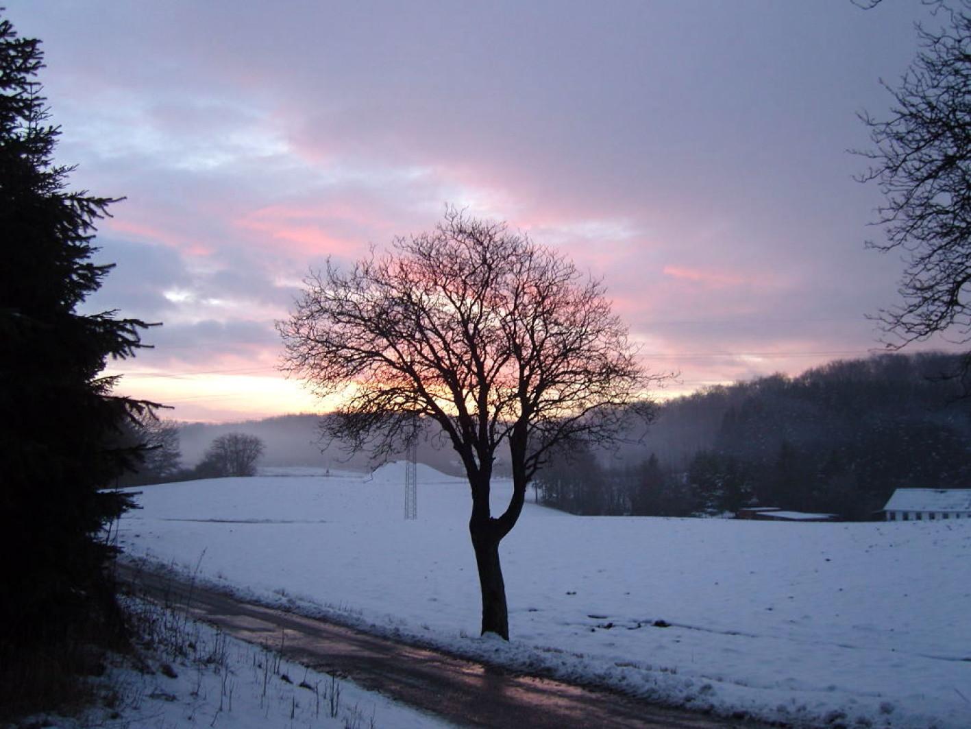 Frost sne januar