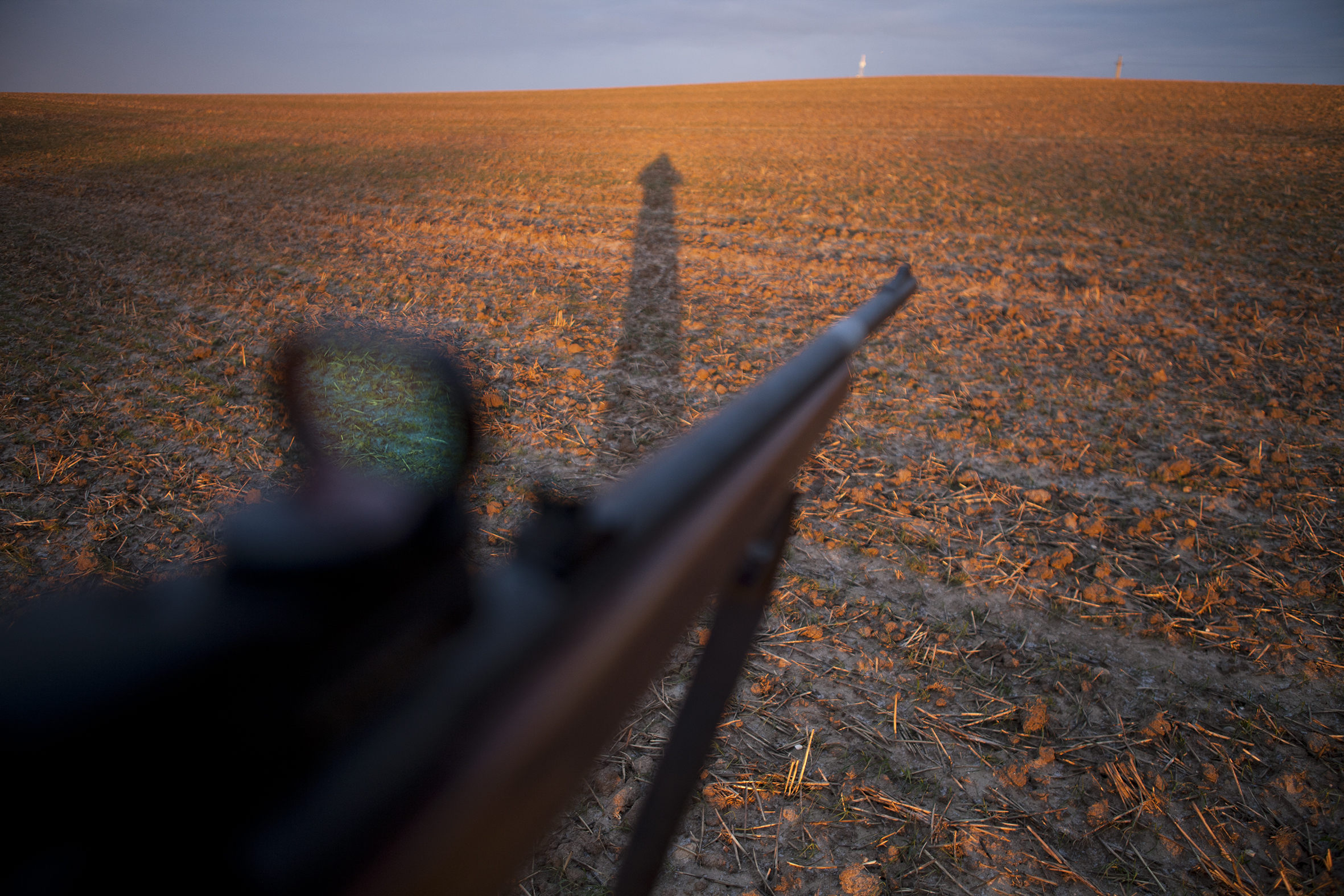 jagt.jpg