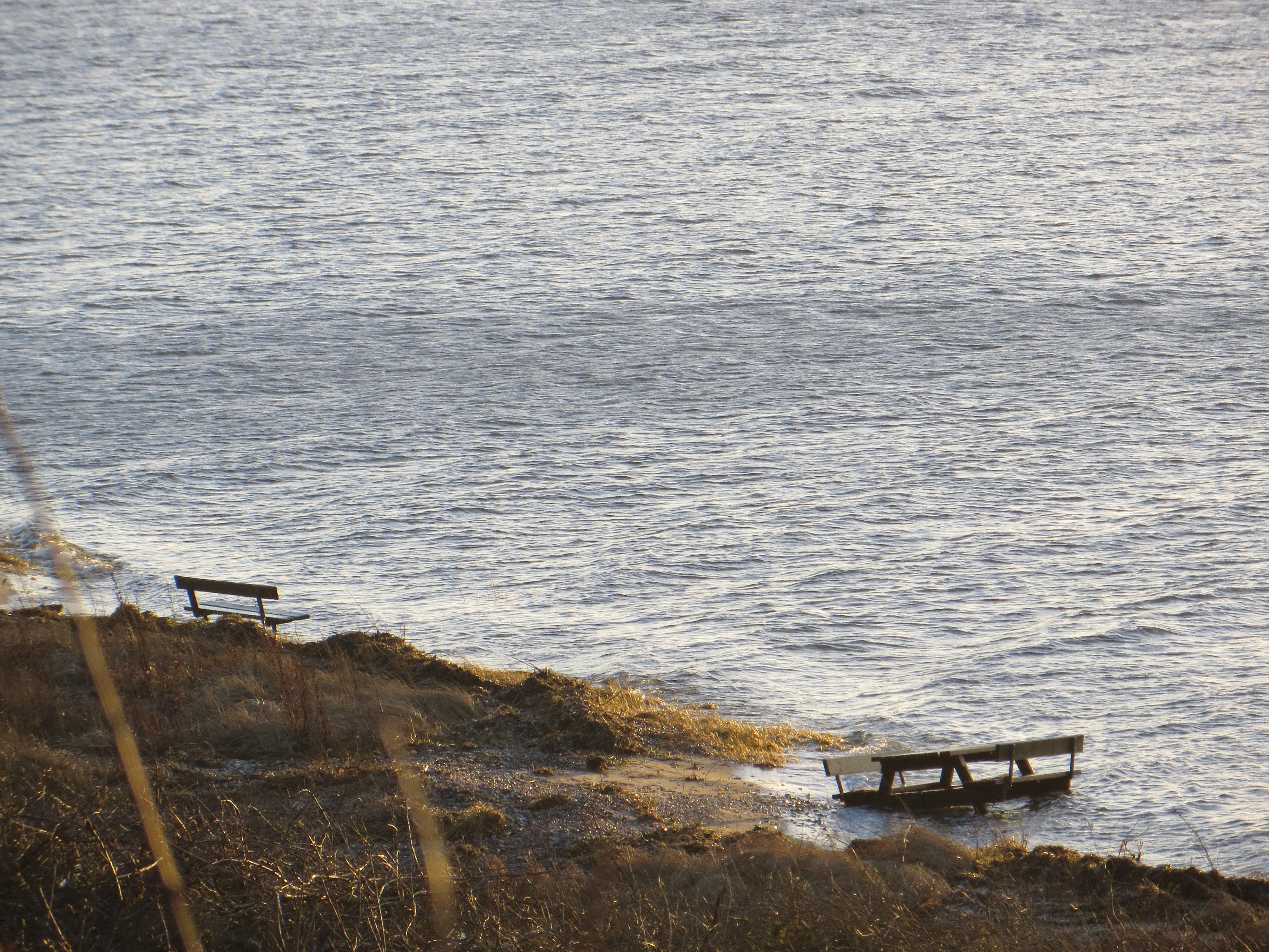 0202 Lovns Limfjorden vand.