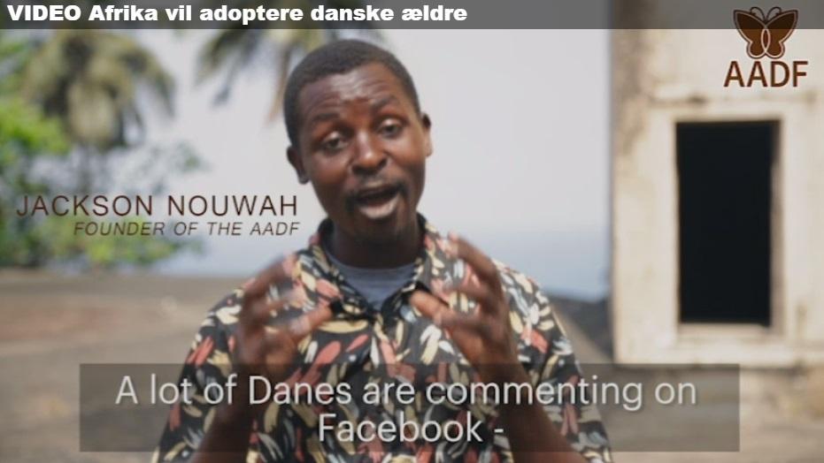 adopt_a_dane.jpg