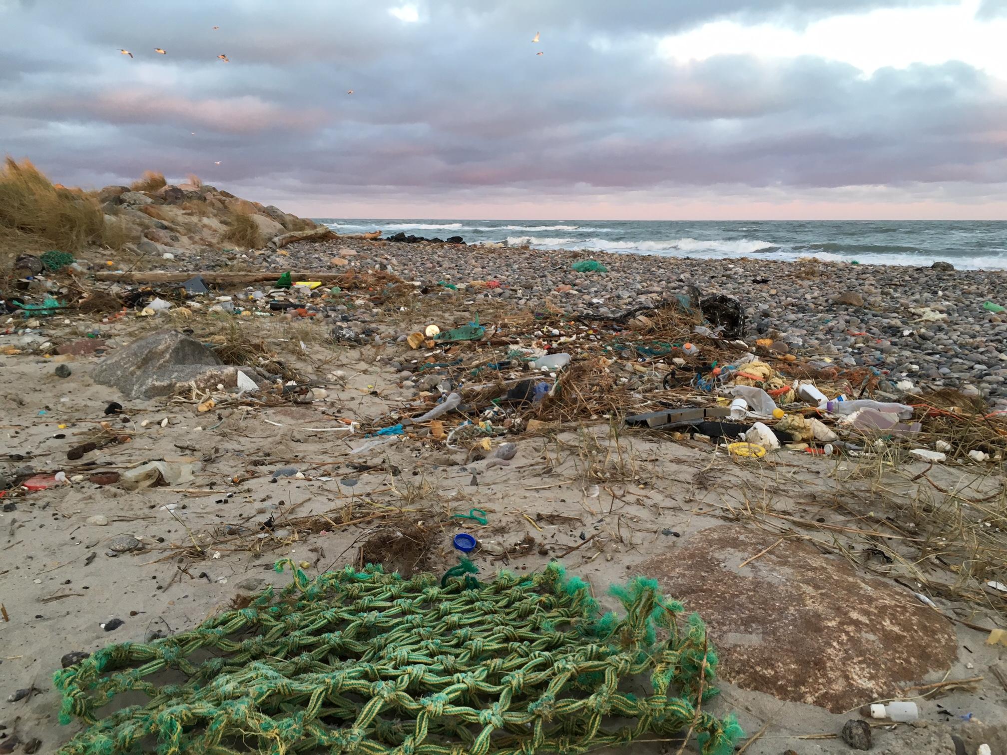 Skagen affald på stranden