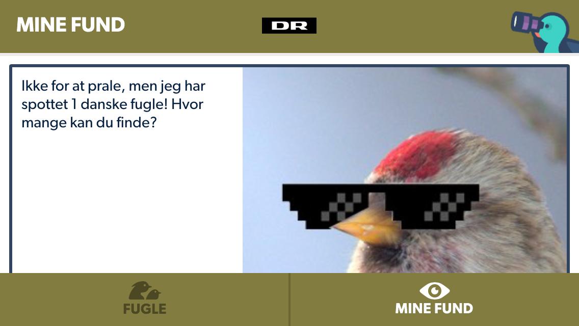 DRs fuglefinder