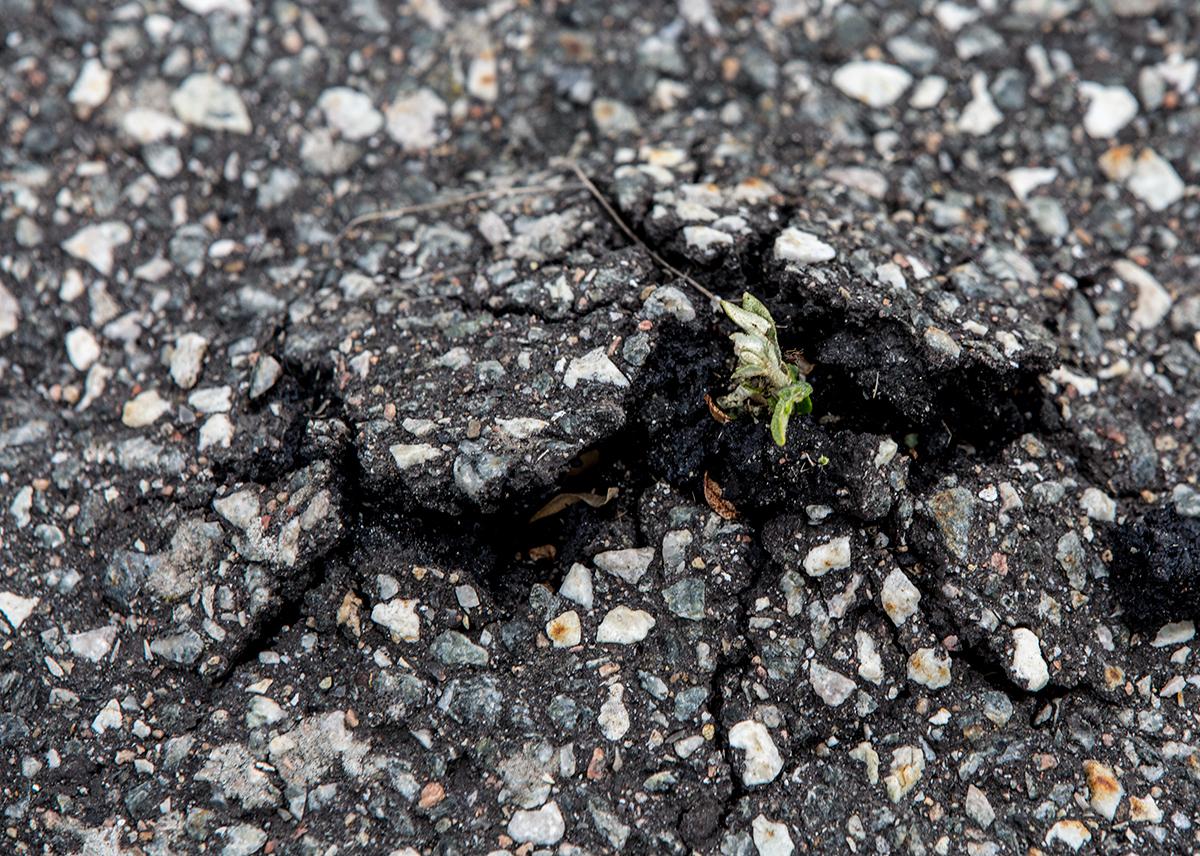 asfalt.jpg