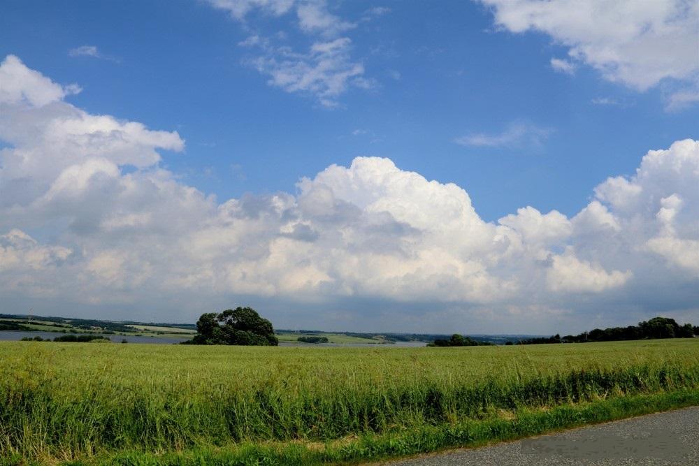 mark og sky