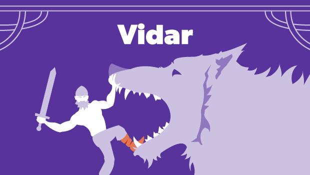 vikingeguder_vidar.png