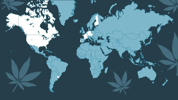 cannabis-verden-teaser grafik