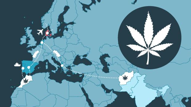 Hashens vej til Danmark