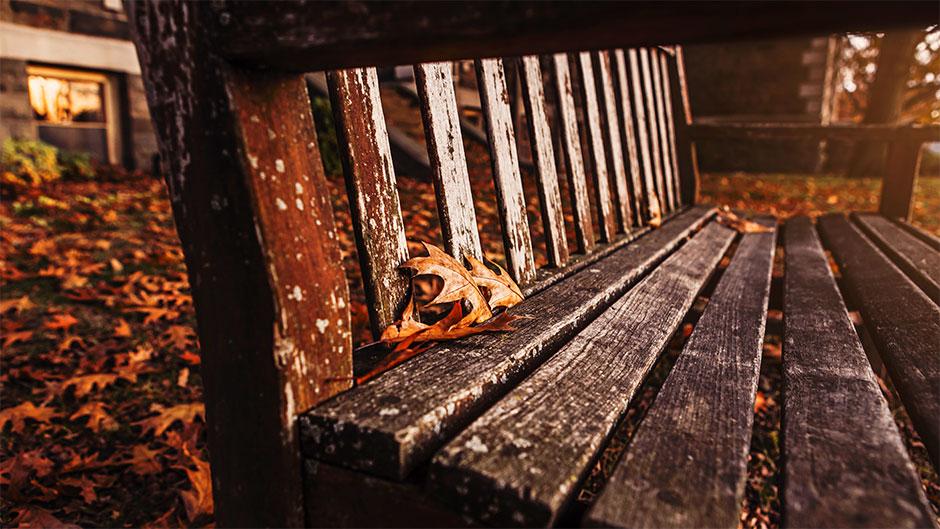 havebænk - efterår - havemøbler