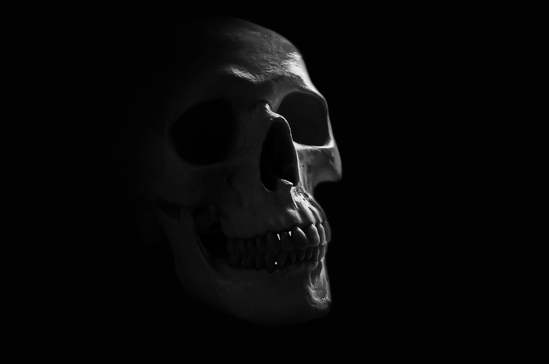 Kranium - død