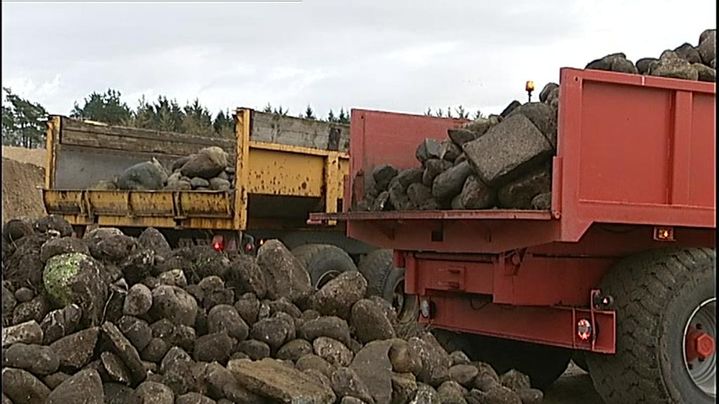 stenrev ved Limfjorden