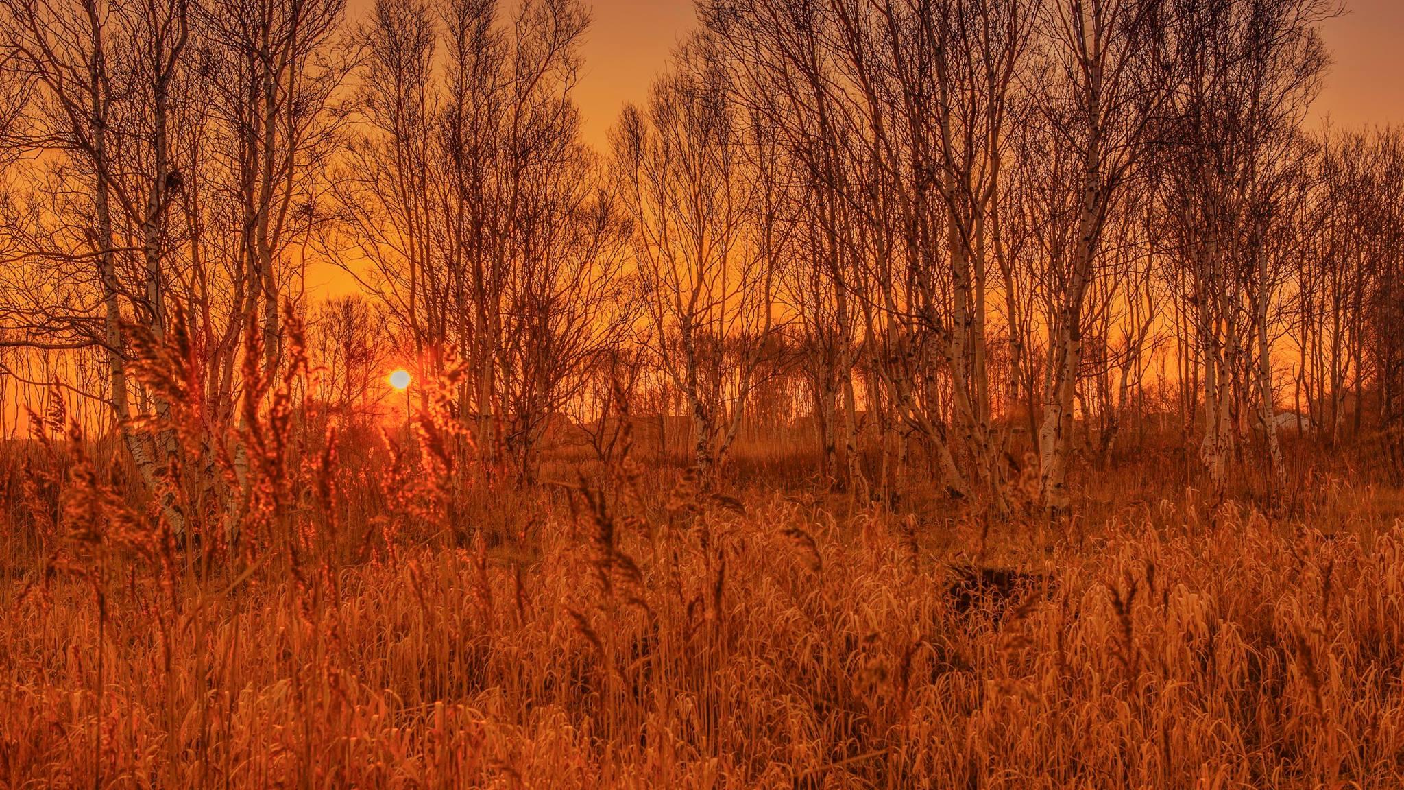 inger_nielsen_aalbaek_solnedgang.jpg