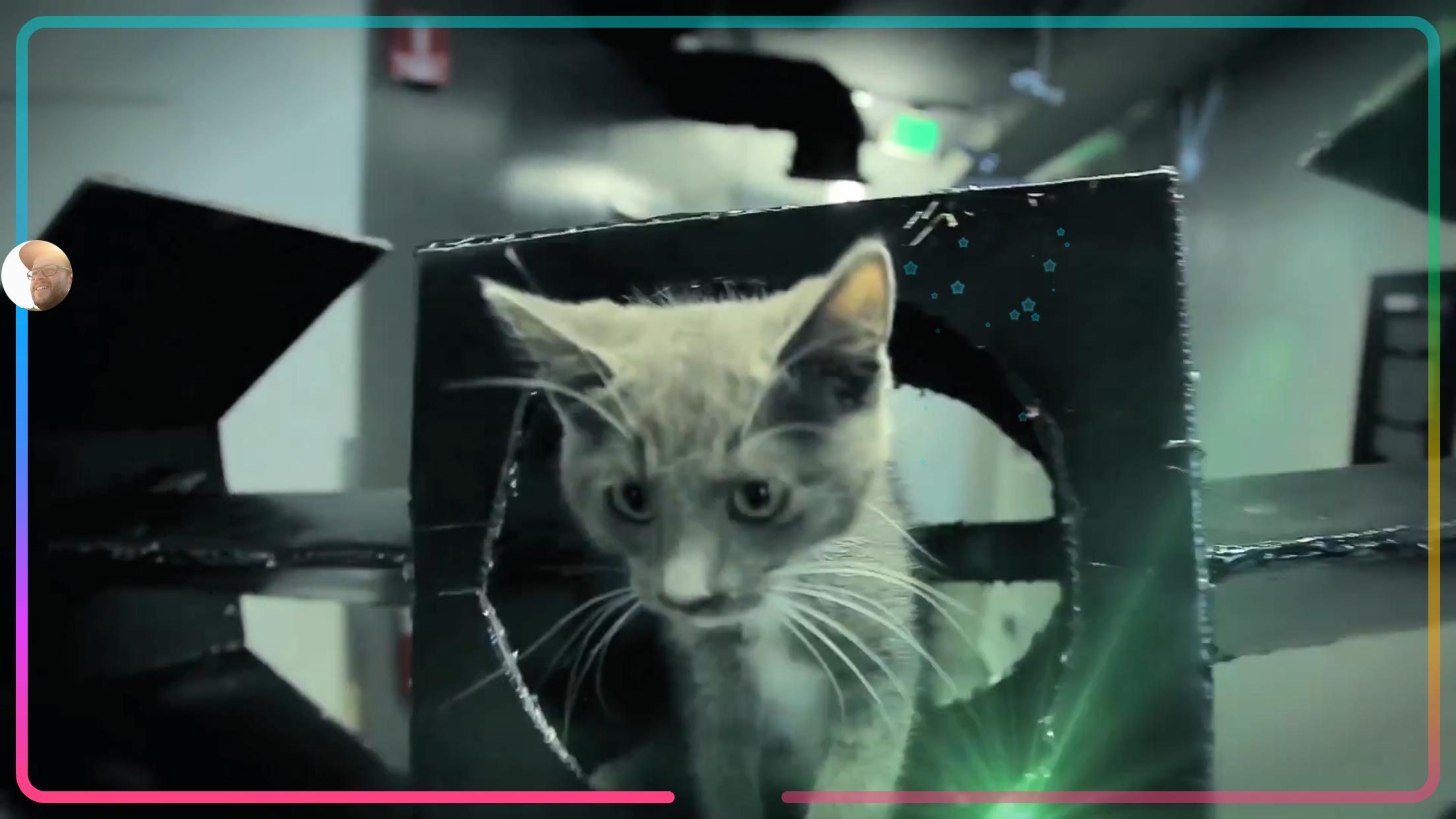 Uptime appen er, ikke overraskende, rig på kattevideoer