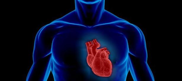 hjertet_0.png