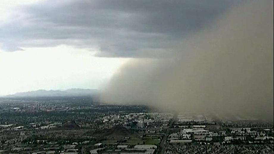 sandstorm_phoenix_drdkrjpo_00003700.jpeg
