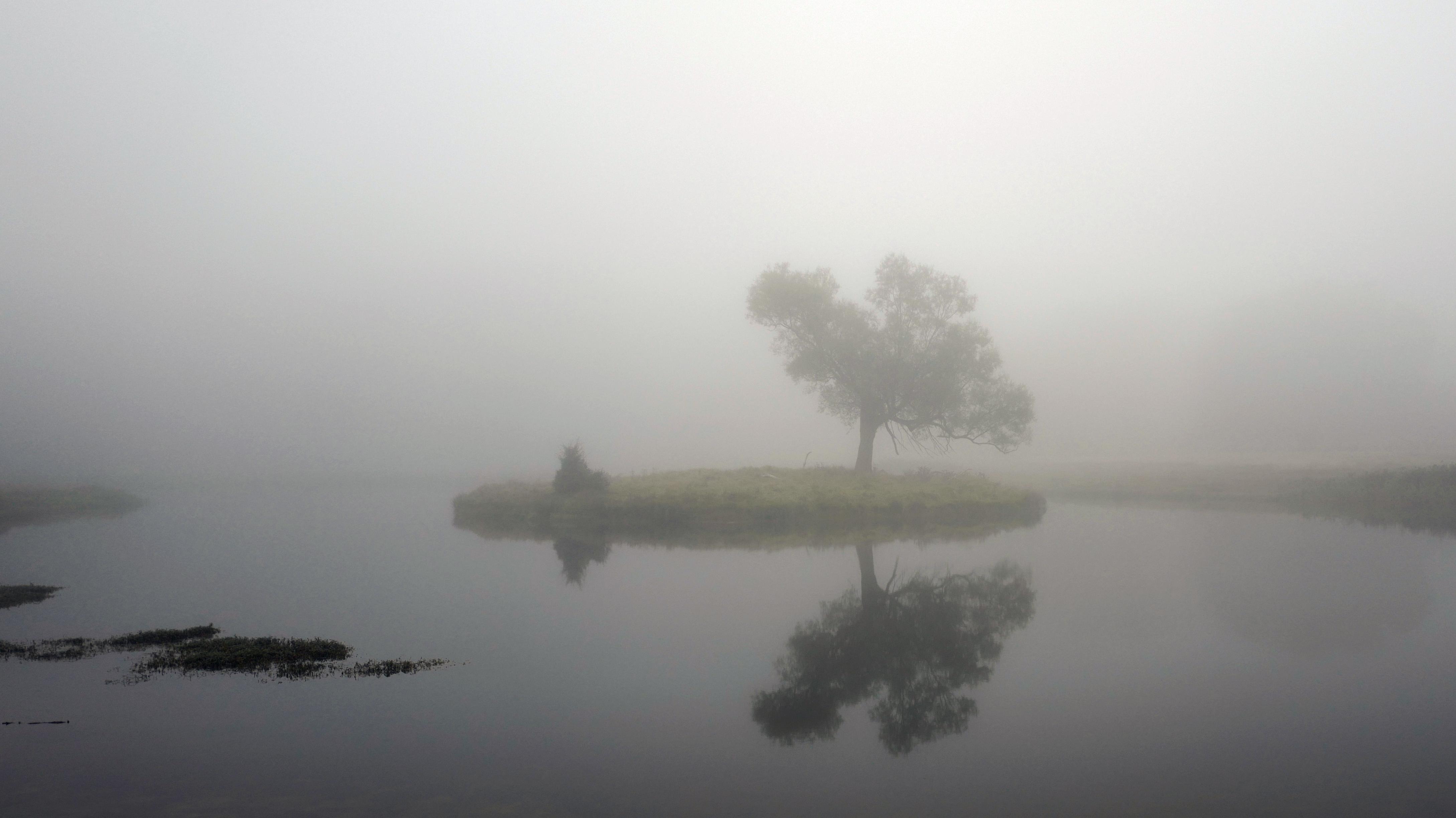 Tæt tåge