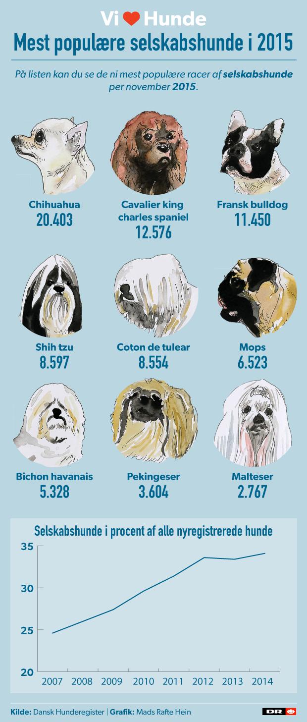mest-poplaere-infografik.png