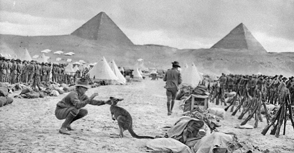 1914_-_australske_9_og_10_battalion_-_kaenguru_0.jpg