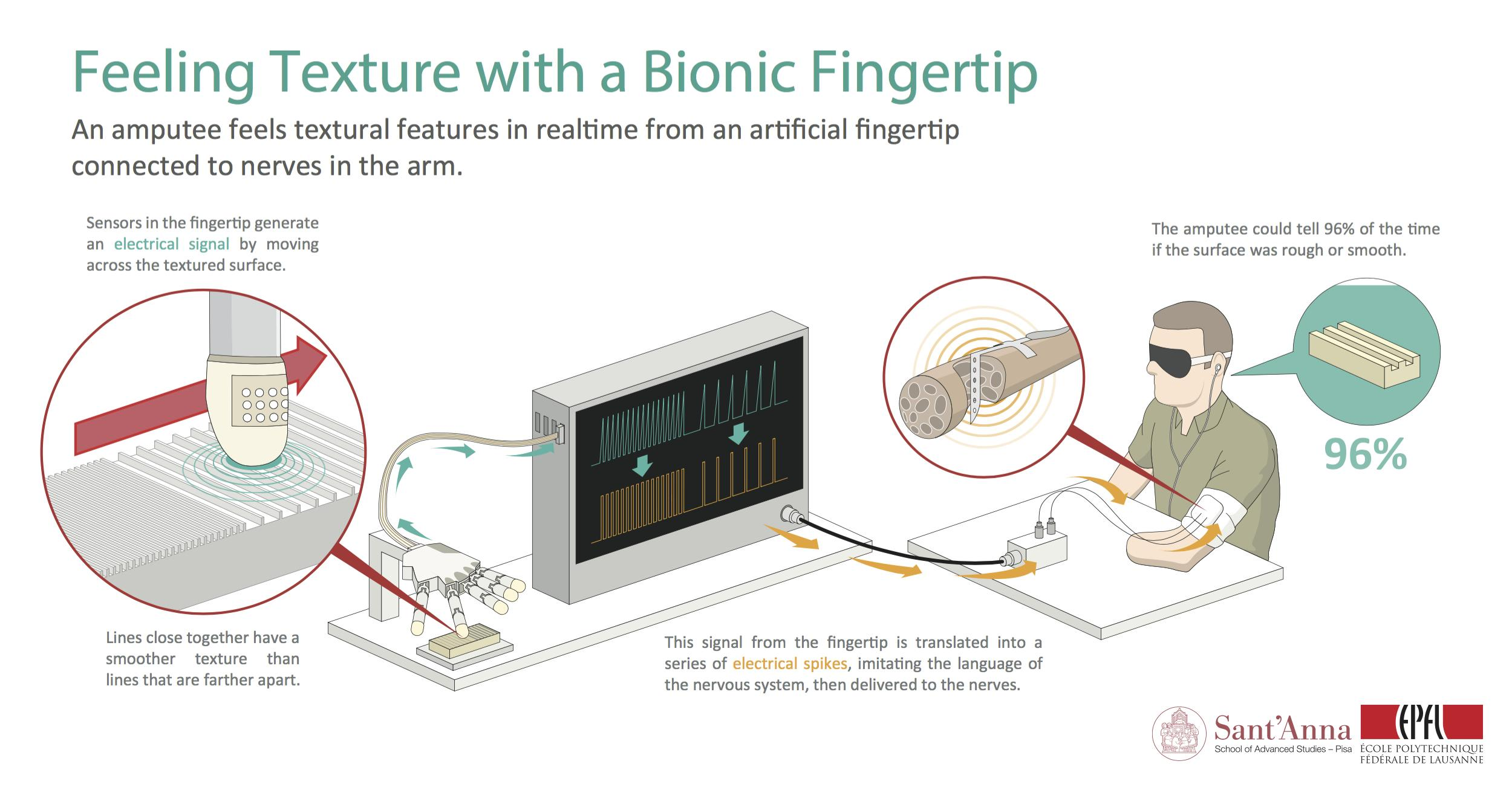 bionictouch_infographic_en.jpg
