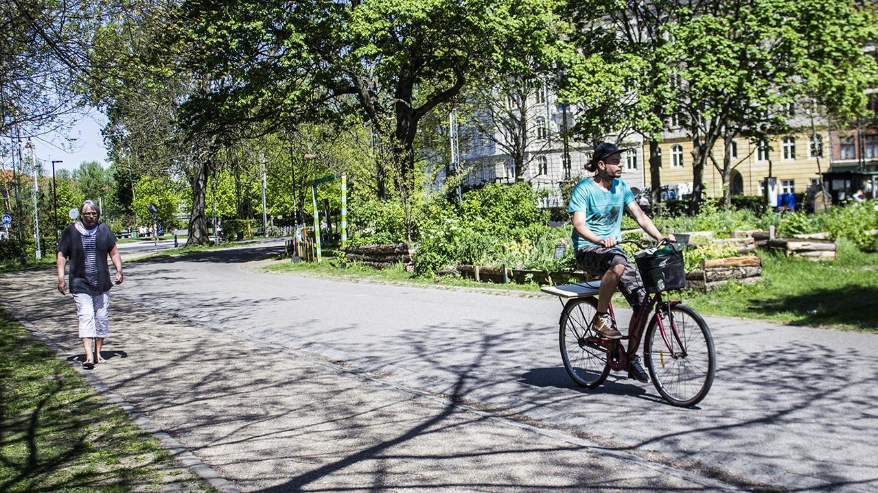 Nørrebro Bypark og urban gardening