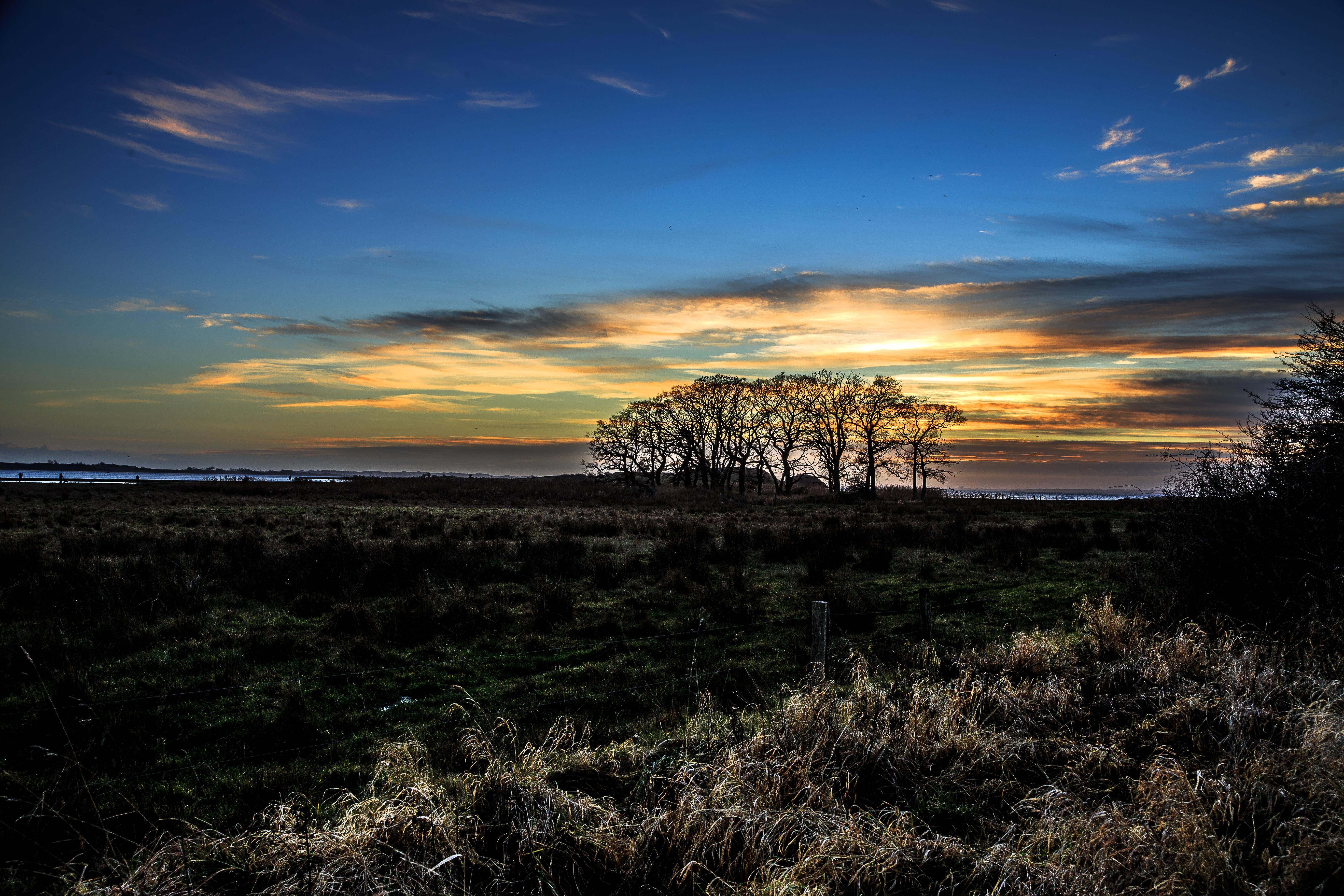 solnedgang_kaloe_roende_-_henrik_elstrup.jpg