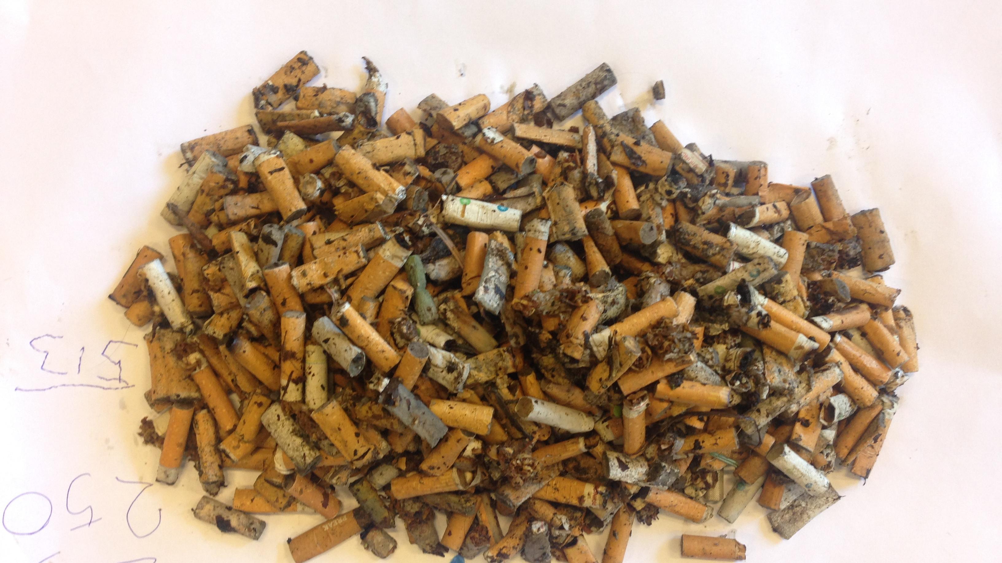 På et kvarter nåede to udsendte journalister at samle 513 cigaretskodder op på gågaden i Vejen.