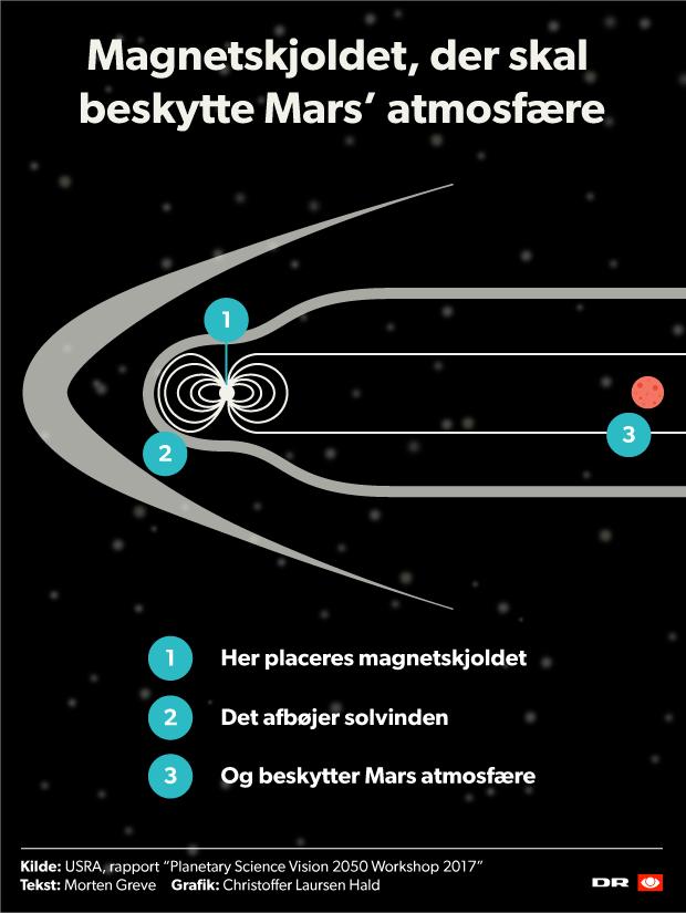 Magnetskjold