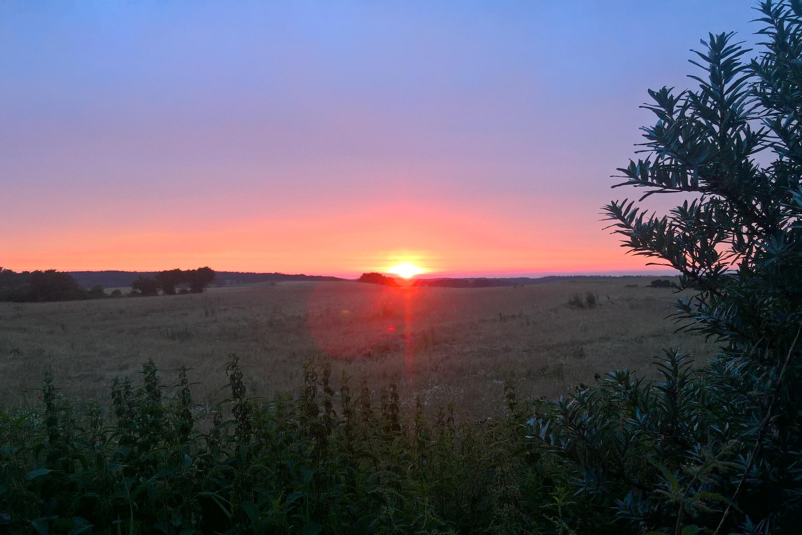 peder_hoegstrup_-_solnedgang_holme_ved_ebeltoft_20170725.jpg