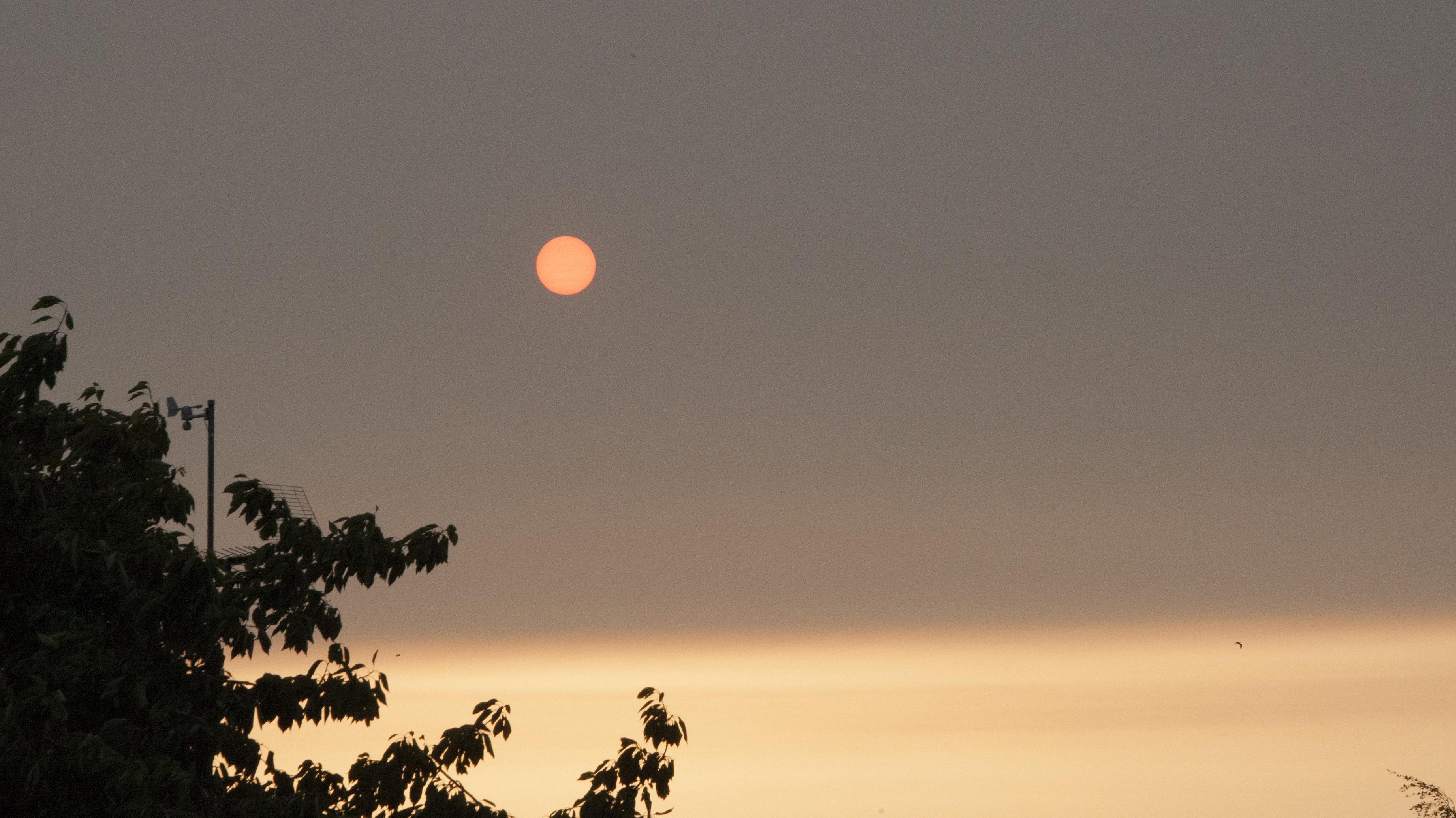 torben_boetius_koege_orange_sol.jpg