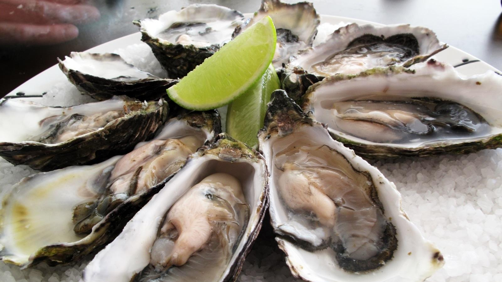pacific_oysters.jpg