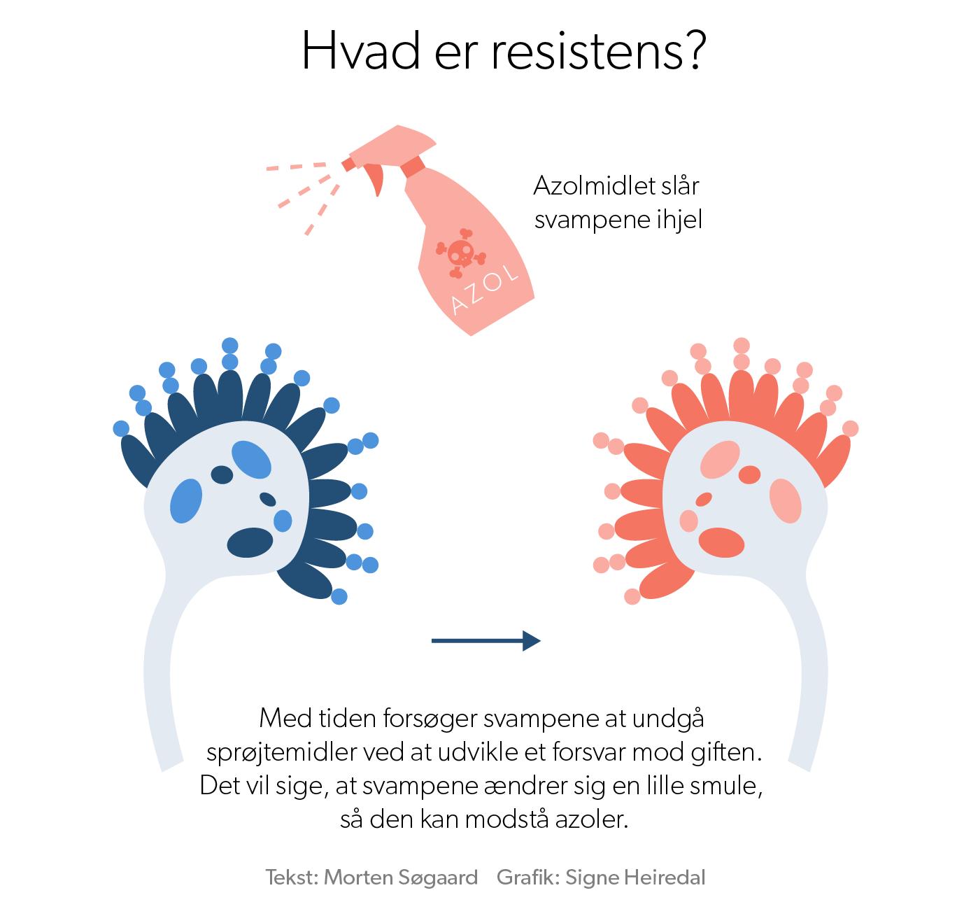 hvad_er_resistens_1.png