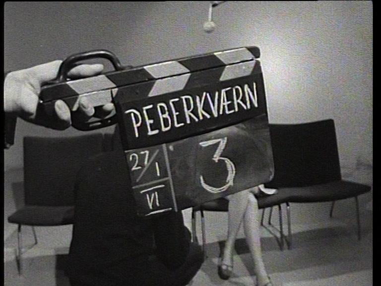 kevn_c_peberkvaernen_-00.08.46.11.jpg