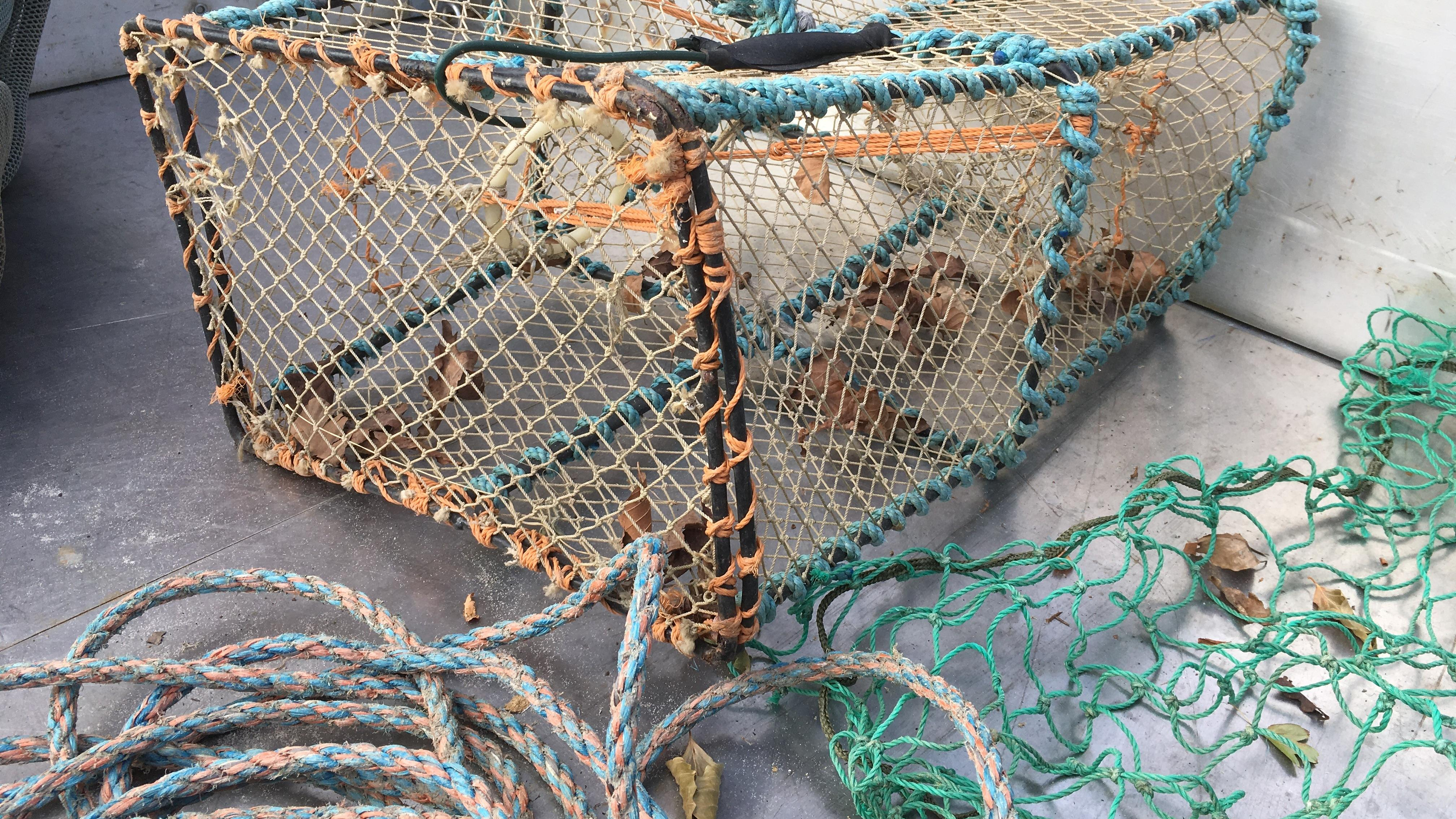 fisketejne.jpg