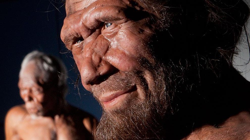 homo-sapiens-and-neanderthal-models-news.jpg.thumb_.1920.1920.png