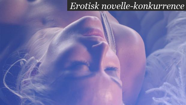 wing man erotisk litteratur