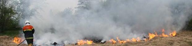 naturbrand.jpg