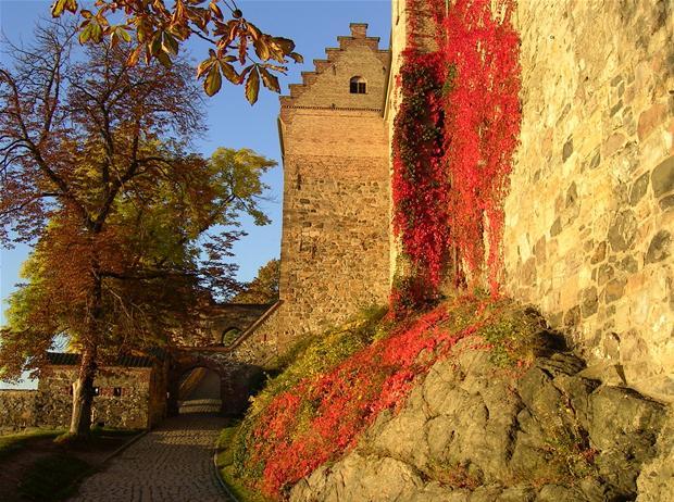 Tag årets efterårsbillede | Vejret | DR