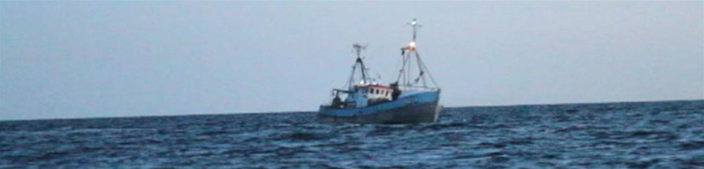 fiskeri.jpg