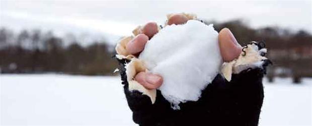 snebold2.jpg