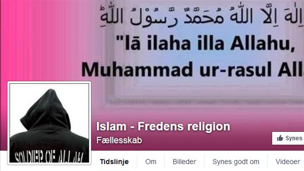 falske_fb_profiler.jpg