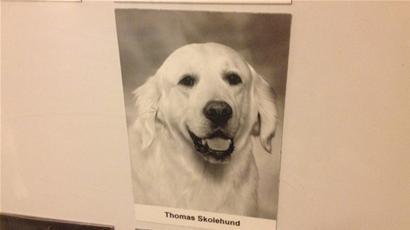 skolehund1.jpg