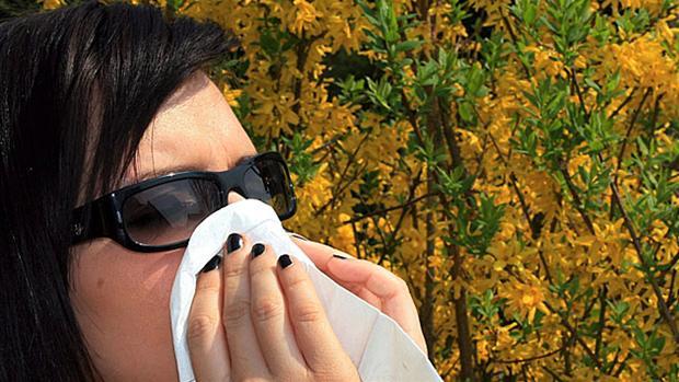 allergi.jpg