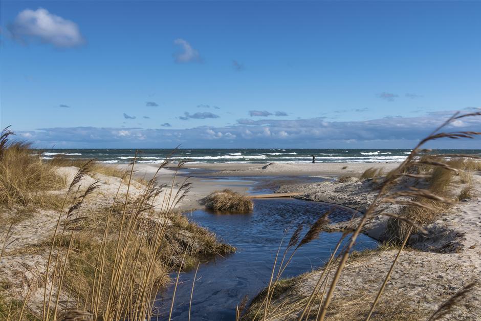 koelig_og_blaesende_dag_ved_stranden_i_aalbaek_inger_nielsen.jpg
