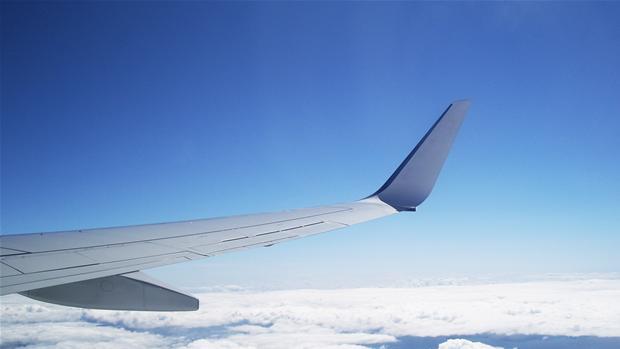 vinge.jpg
