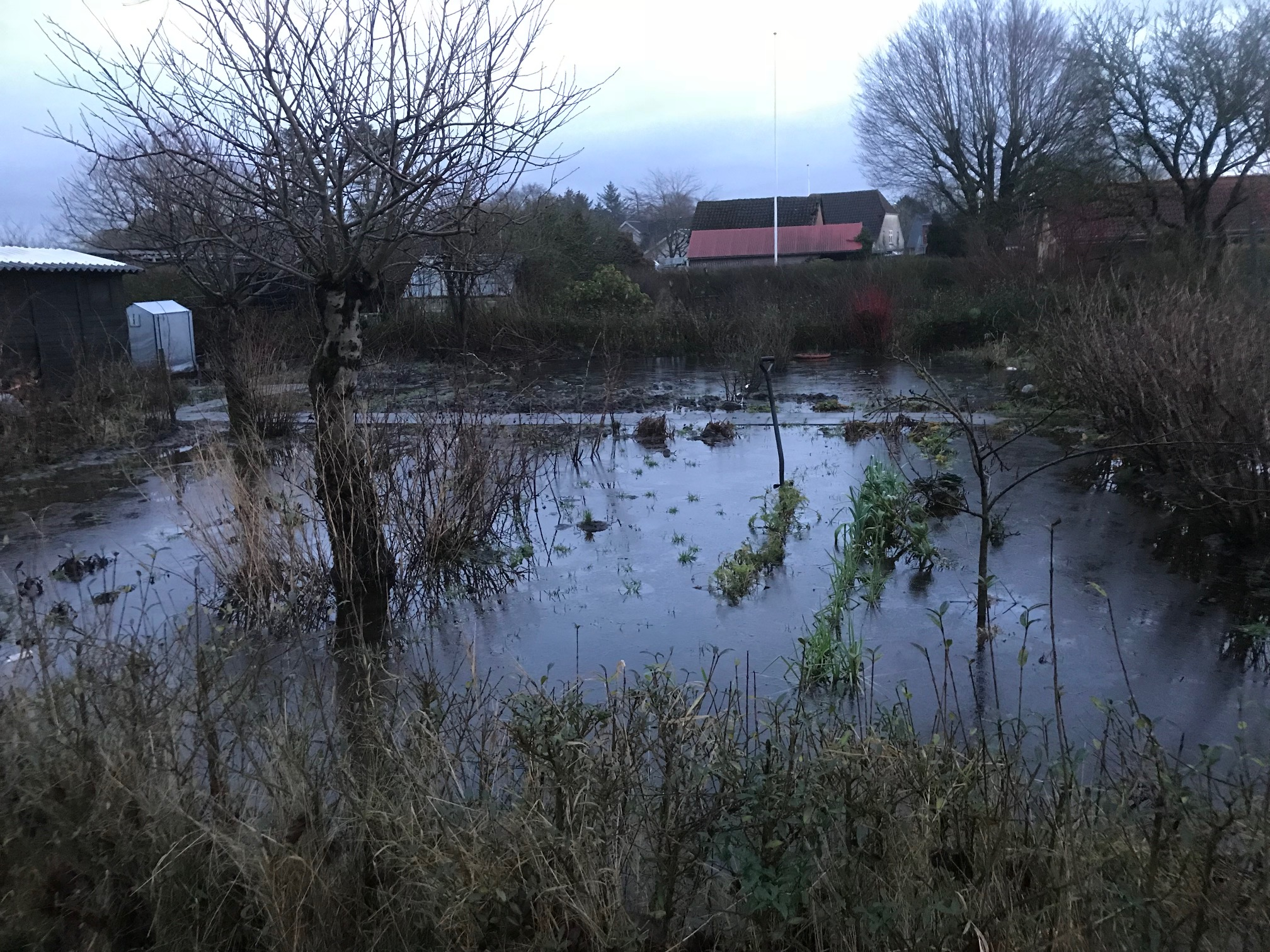 våd have